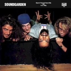 Room a Thousand Years Wide by Soundgarden